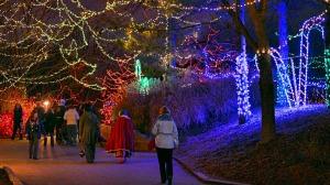 Christmas-At-The-Zoo-7